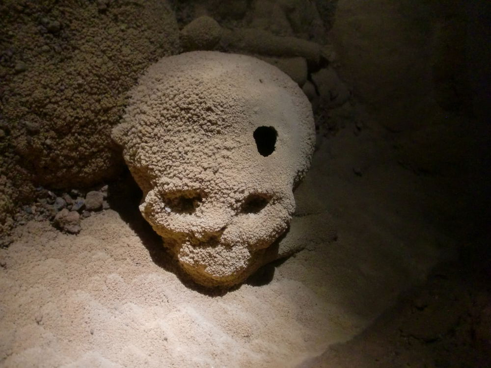 Skull with a hole. ATM Cave, Belize. Tunnocks World Tour
