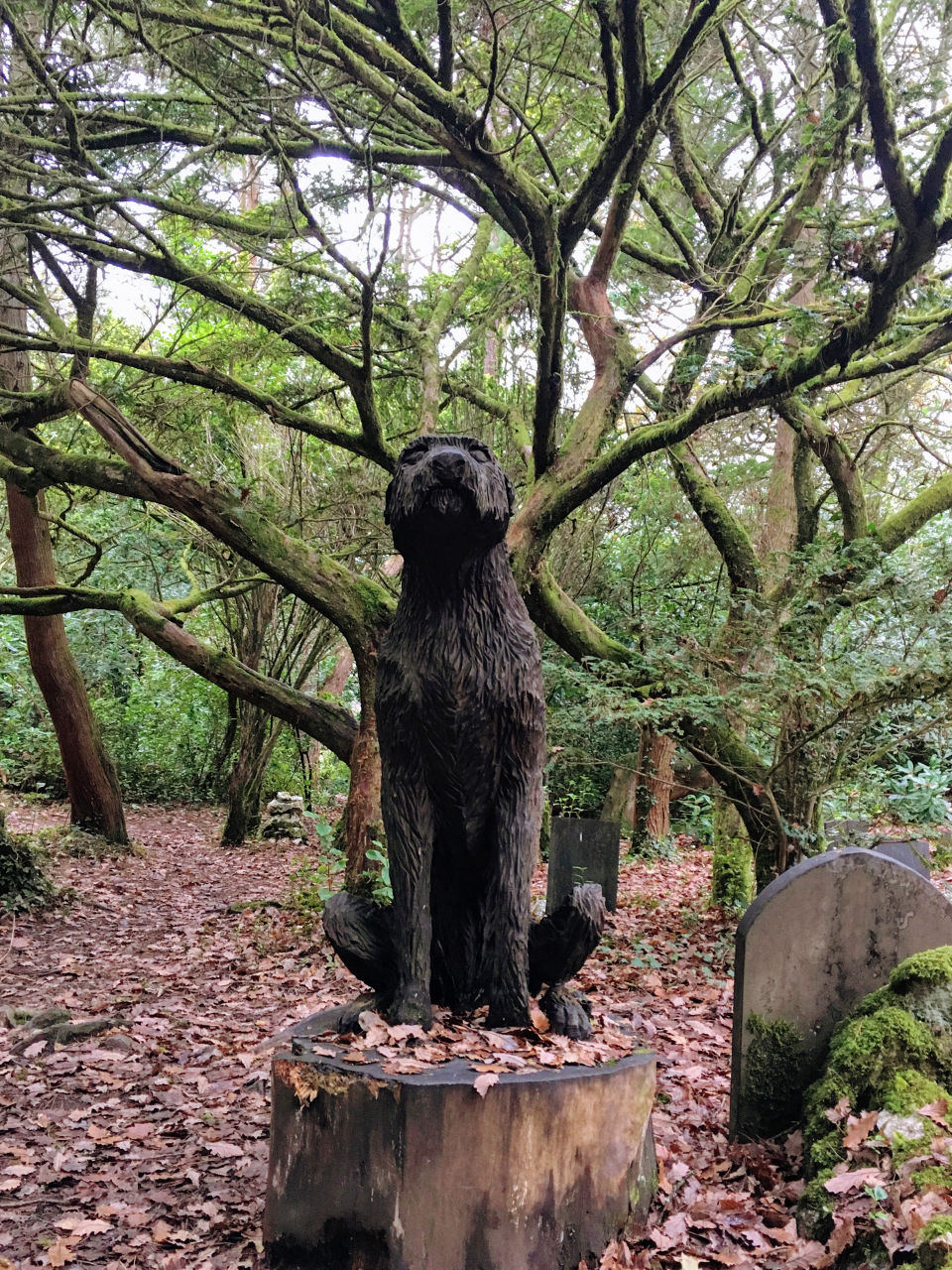 Dog grave carving at Portmeirion